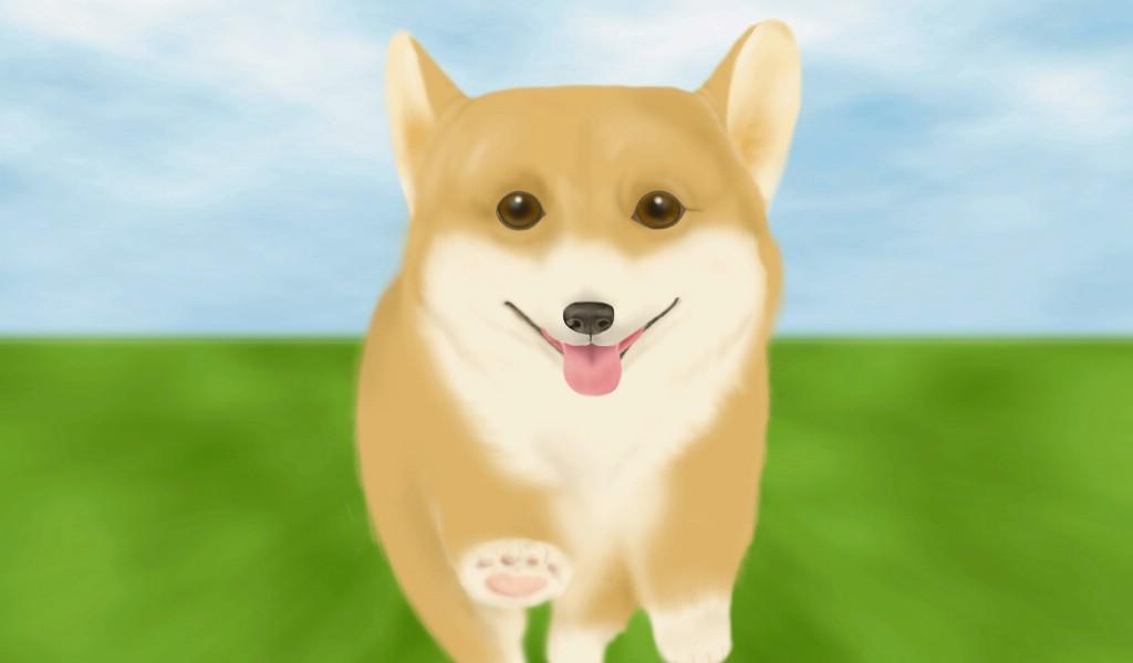 可爱狗狗插画图片壁纸