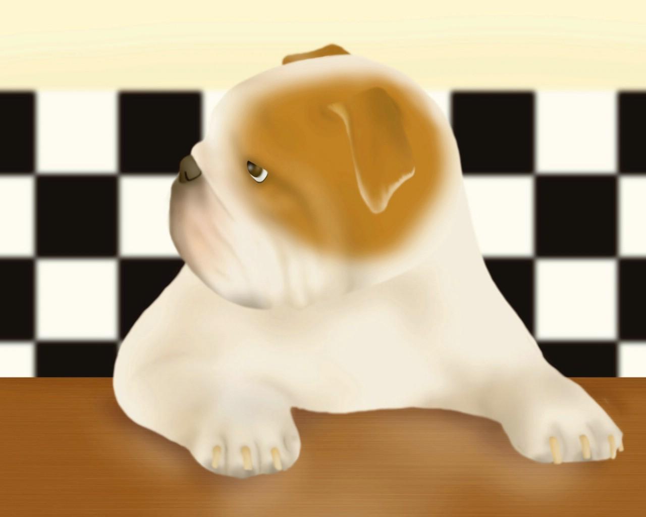 可爱胖狗狗萌宠图片_家具