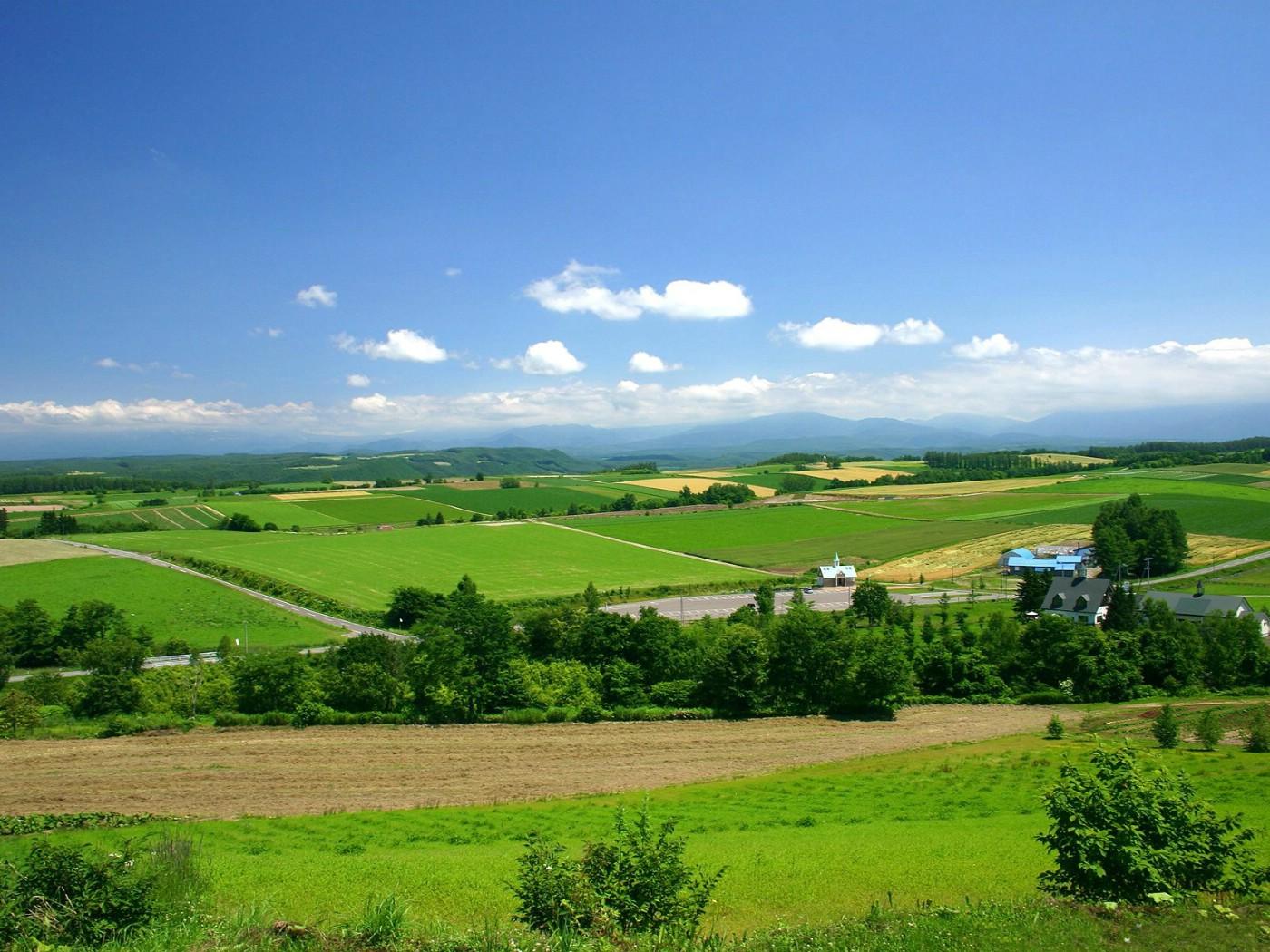 北海道的郊野壁纸图片风景壁纸风景图片素材桌面壁纸