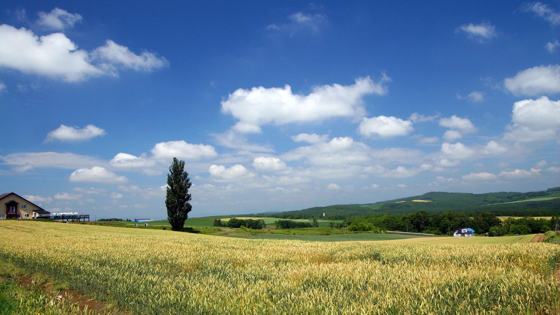 壁纸图片-风景壁纸-风景图片素材-桌面壁纸 壁纸1920×1080北海道天堂