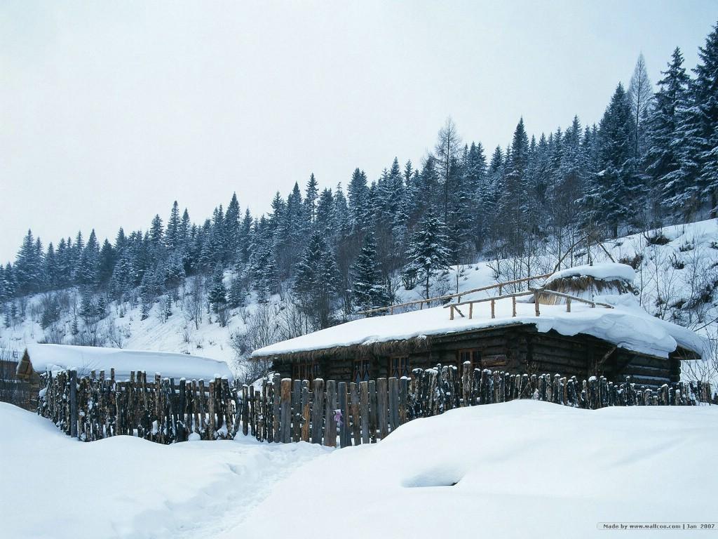 768冬天下雪的小村图片 desktop wallpaper of Snowing Village壁纸,