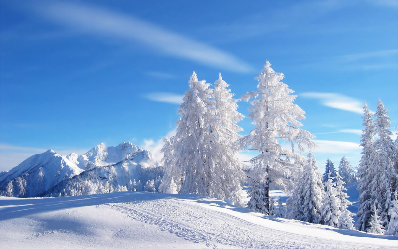 绝色精美动态风景