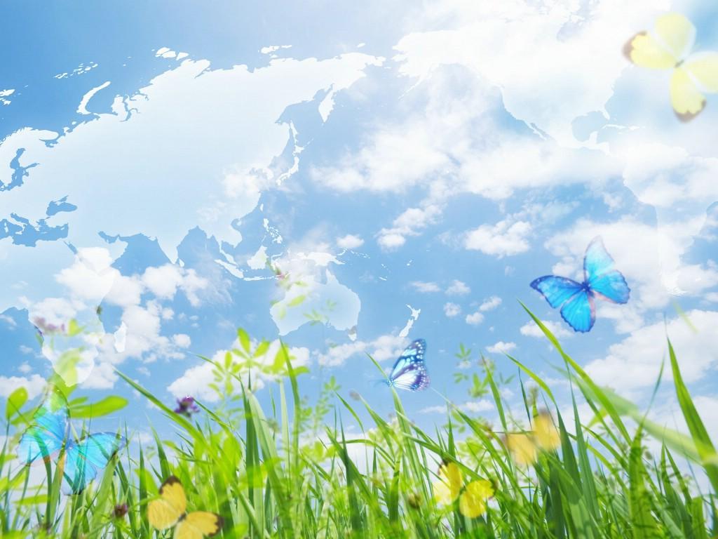 768蓝天白云 草地 蝴蝶 清新大自然ps壁纸壁纸,梦幻大自然 高清图片