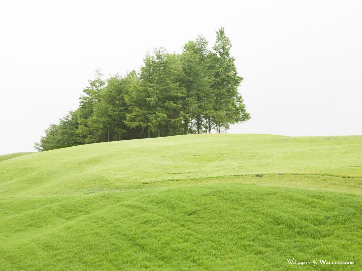壁纸1400×1050天空草原图片