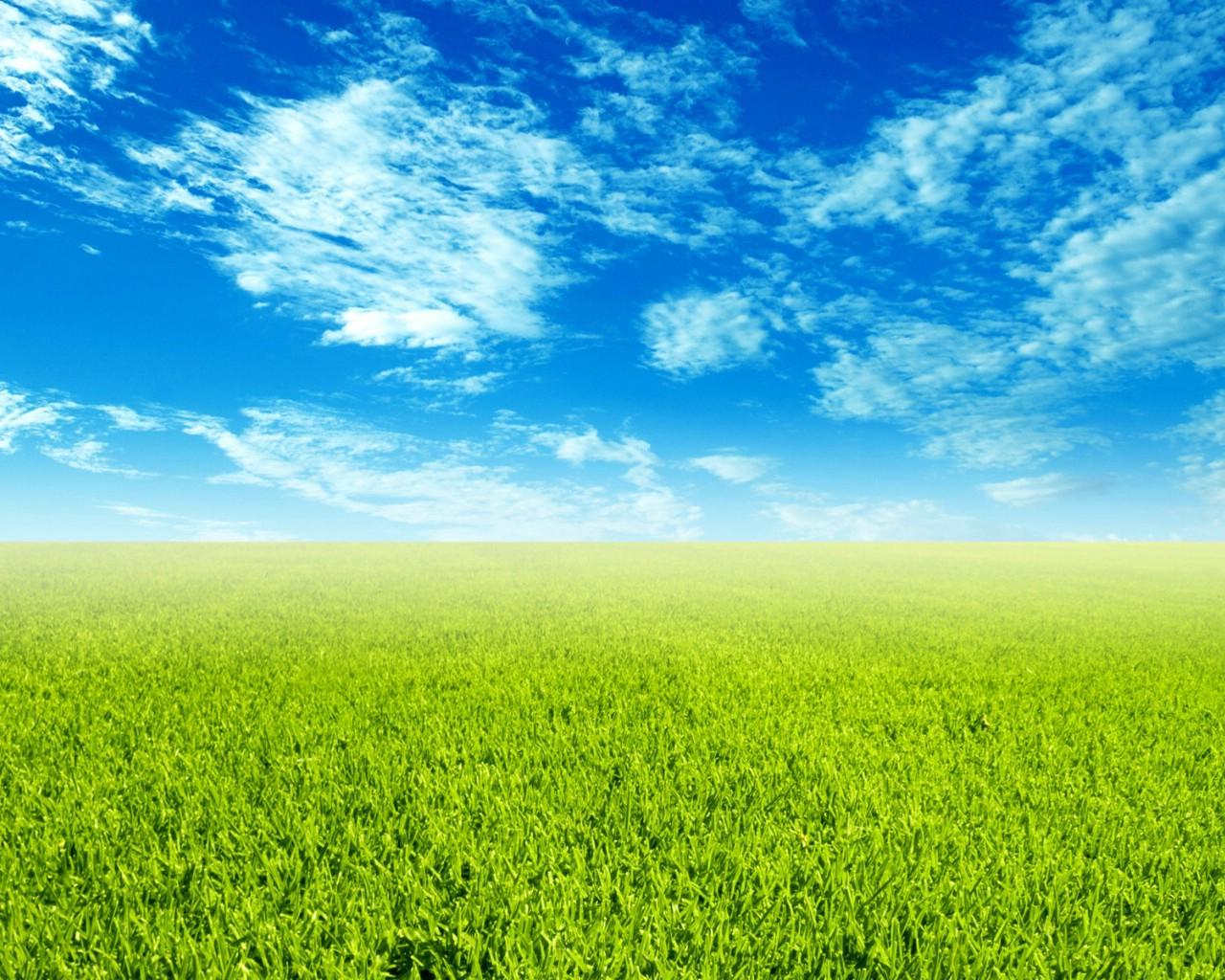 壁纸首页 风景壁纸 蓝天白云草地桌面背景图片