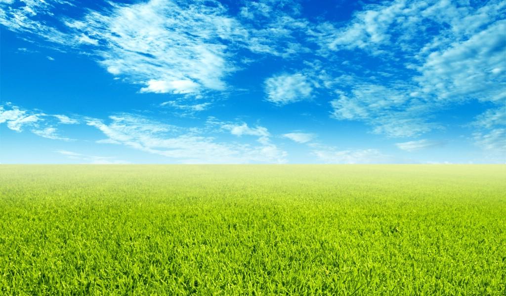 蓝天白云草地 清新怡人的郊野图片壁纸