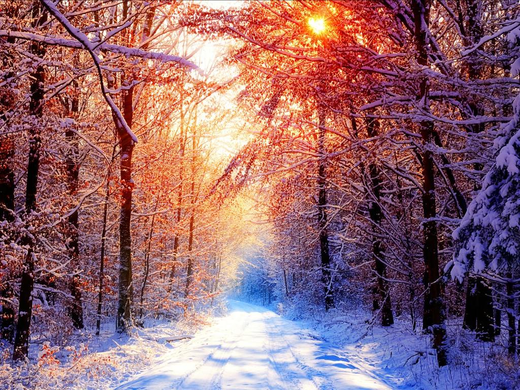 新西兰郊外风景壁纸 新西兰 童话雪景风景图片壁纸