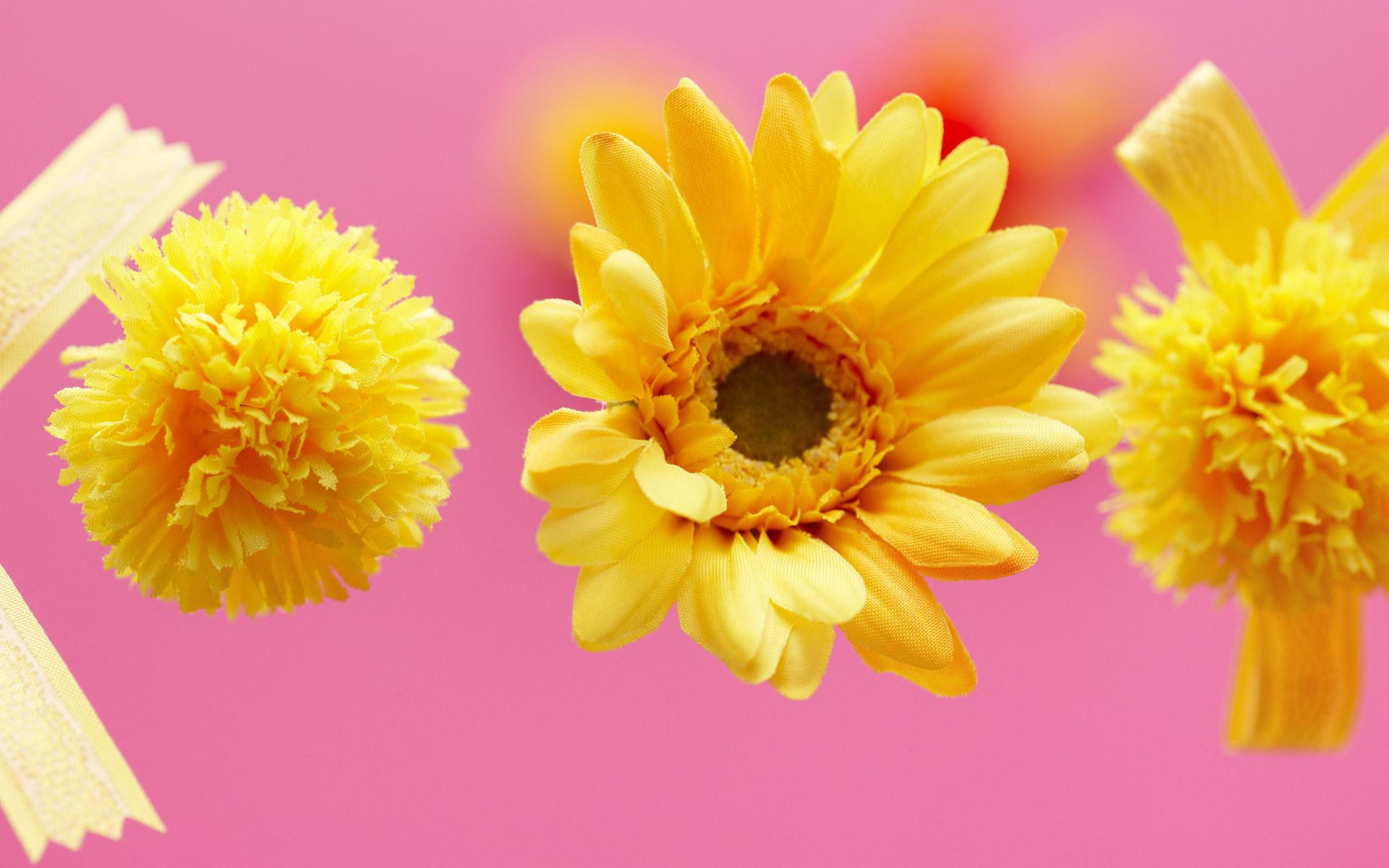 壁纸1920×1200室内装饰仿真花卉图片 1920 1200壁纸 温馨布艺仿真花卉壁纸壁纸图片花卉壁纸花卉图片素材桌面壁纸