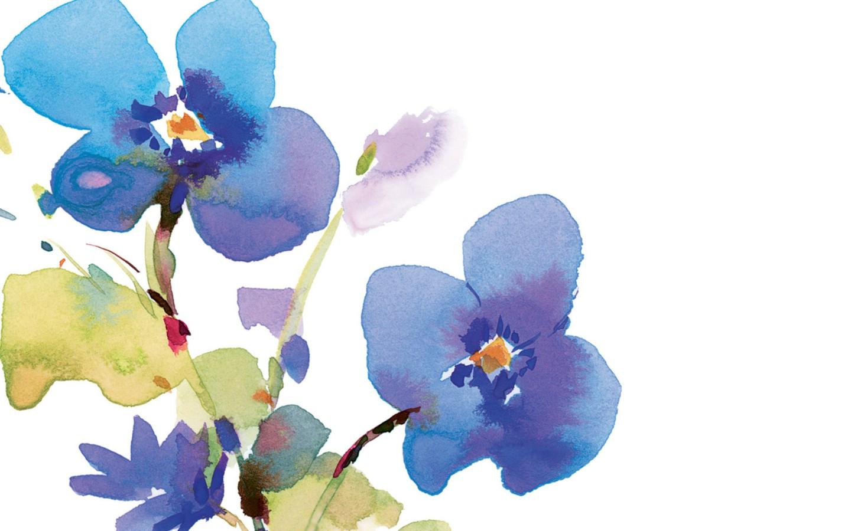 简单水彩花卉步骤图