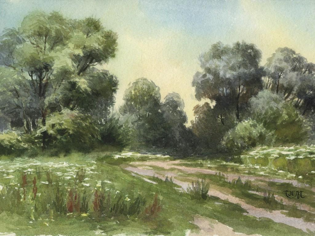 阳光透过森林水彩画图片