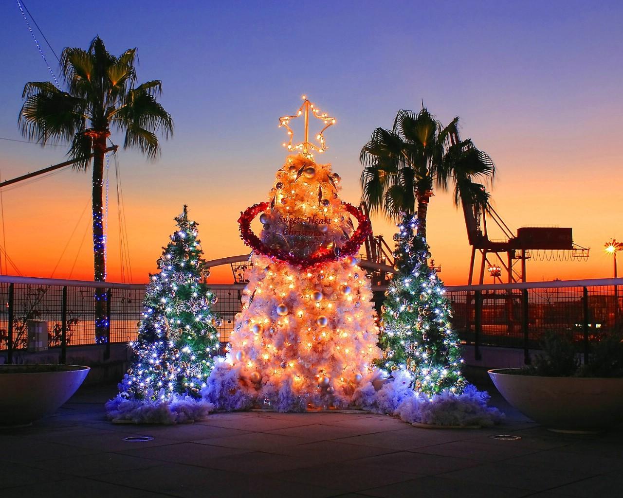 夜景壁纸1440×900时与光 高速公路夜晚圣诞夜景夜间灿烂美丽的极光