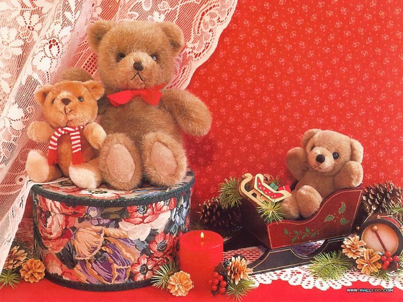 可爱的泰迪熊