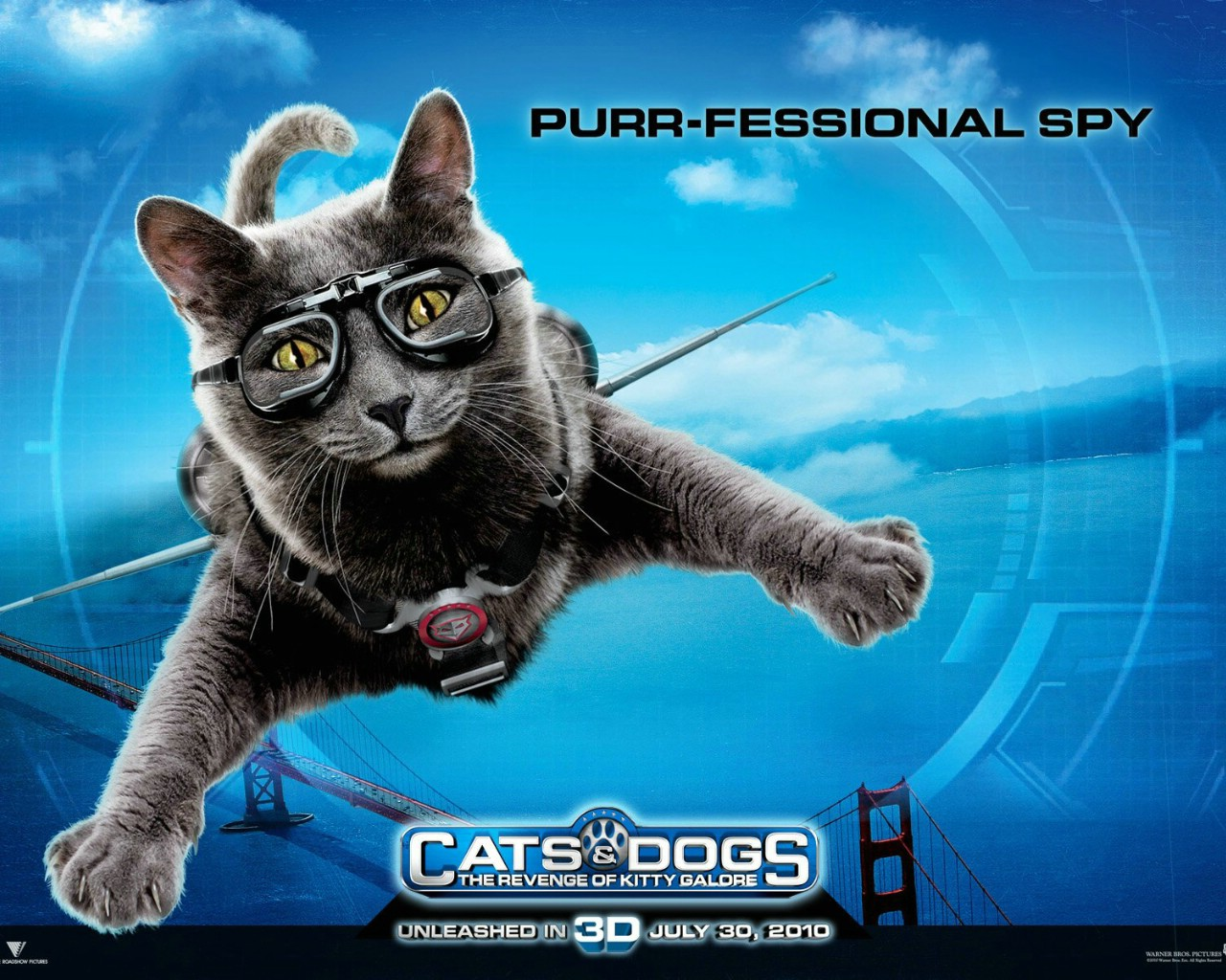 Cats And Dogs Breeds In Movie